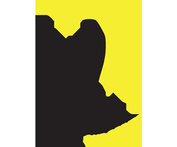 DDADD  Designated Driver Service