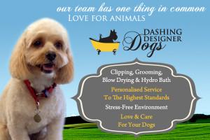 Dashing_Dogs_DTR_advert