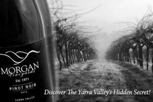 Discover The Yarra Valley's Hidden Secret!